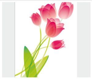 flower006